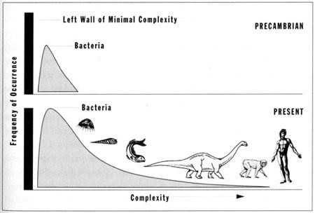"From Gould (1997) ""The frequency distribution of life's complexity becomes increasingly skewed through time, but the bacterial mode never alters."""